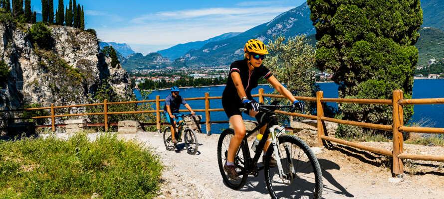 Området byder på masser af fantastisk natur, og er helt ideelt for vandre- og cykelture.