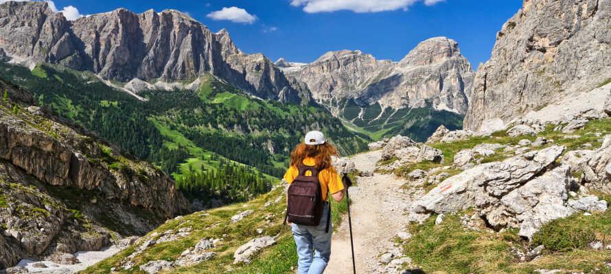 Utforsk det fantastiske landskapet med fotturer og sykling rundt Monte Bondones vakre grønne omgivelser.
