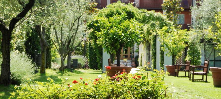 Iseo Lago Hotel har et 10.000 m² stort haveområde som byder på masser af muligheder for afslapning og aktiviteter.