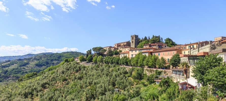 Hotel Tuscany Inn ligger i hjertet af den toscanske kurby, Montecatini Terme, og tilbyder en varm atmosfære.