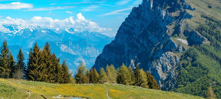 Hotellet ligger i naturskønne omgivelser ved foden af Monte Baldo.