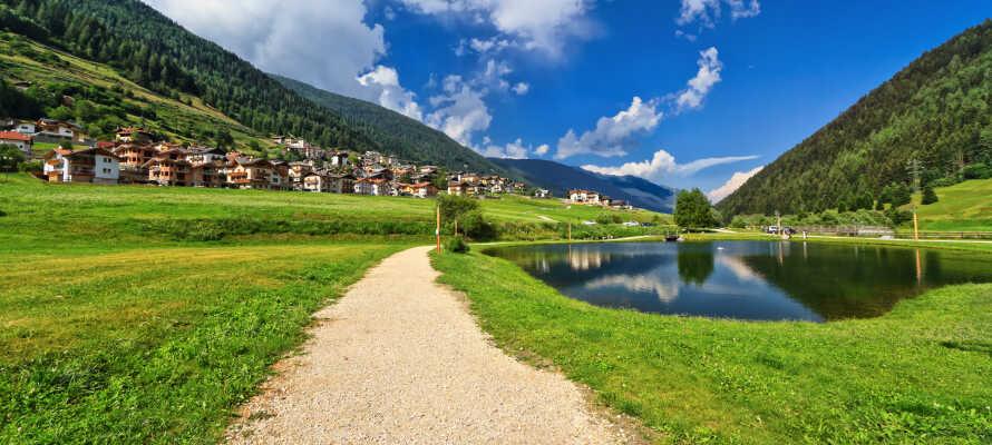 Udforsk den fantastiske natur i Val di Sole. Opholdet inkluderer blandt andet to guidede vandreture per uge.