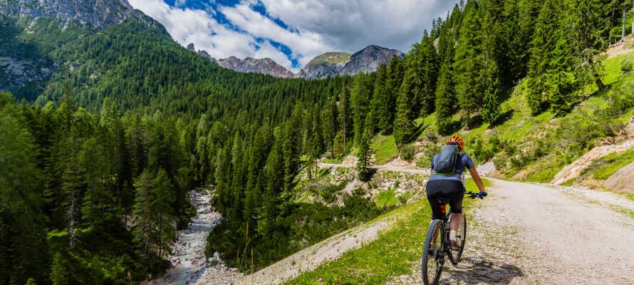 Vandreture, mountainbiking og skisport - Gitschberg Jochtol-regionen er et paradis for aktiv ferie hele året rundt.