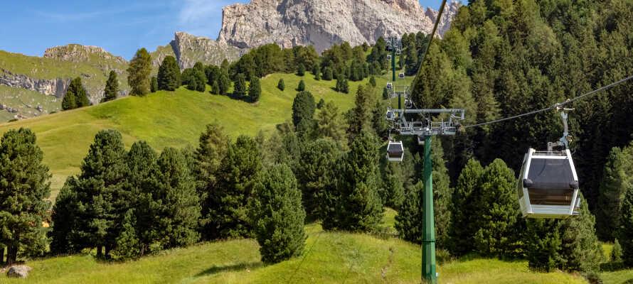 Det inkluderede Almencard PLUS giver jer gratis ture med bjergbanerne og offentlig transport, og rabat på en række museer og seværdigheder.