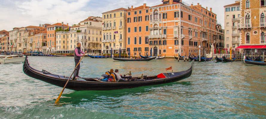 Besøg kanalbyen Venedig med en herlig dagsudflugt, som bestemt er køretiden værd.