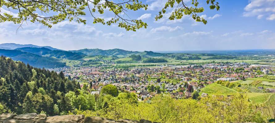 Fra Oberkirch kan I let drage ud i Schwarzwalds herlige natur.