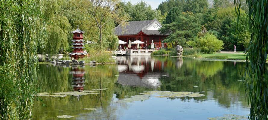 Tæt på hotellet finder I både Tierpark Berlin og 'Gärten der Welt', som bl.a. huser en engelsk, en japansk og en italienske have