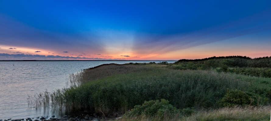 Oplev en enestående solnedgang over Ringkøbing Fjord.