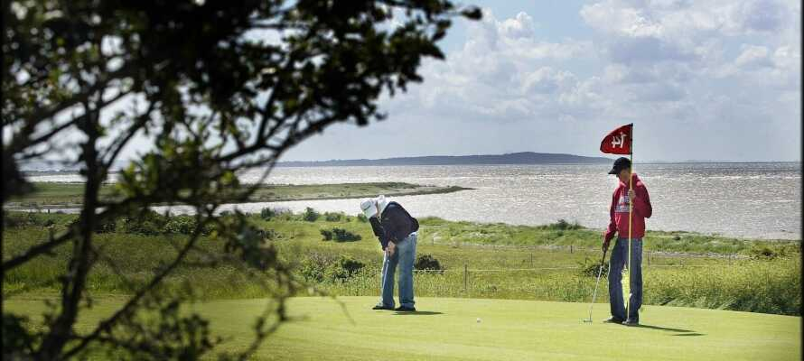 Rett ved siden av hotellet ligger Løgstør golfklubb med sine 18-hull. Banen strekker seg helt ned til Limfjorden.