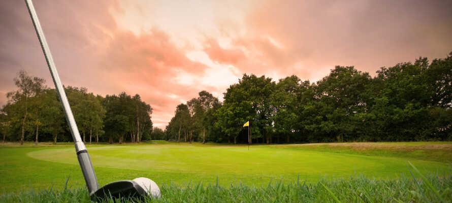 For de som er  golfintresserte, så har hotellet 4 golfbaner innen 2 mils radius.