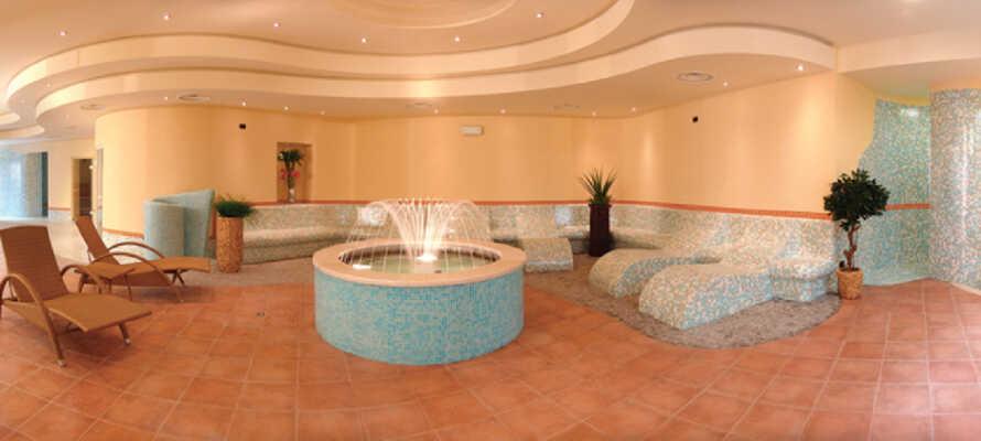Slappna av i hotellets eleganta och välinredda wellnessavdelning. Koppla av i bastun eller träna i fitnessrummet.