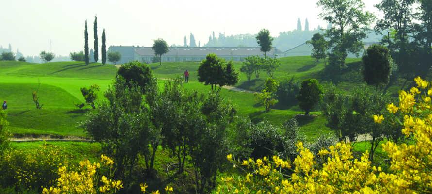 Spill en runde golf på hotellets egen 18-hulls golfbane, nydelig anlagt i naturskjønne omgivelser.