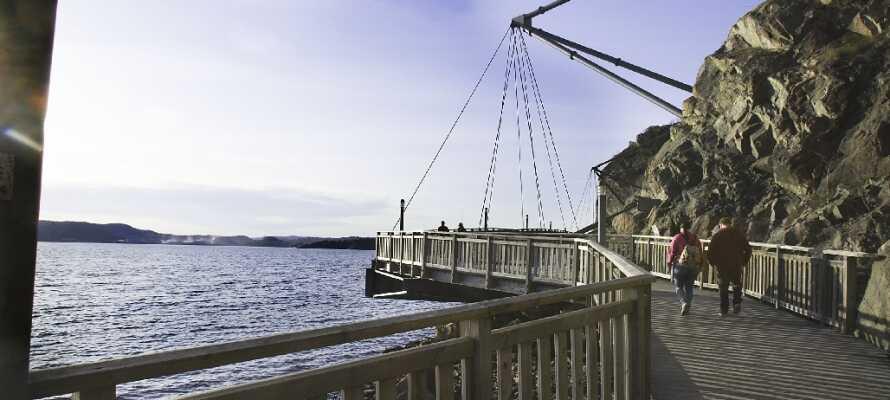 """Gå en tur langs den smukke 9,3 km. lange promenade i Uddevalla, der løber fra Lindesnäs til """"Skalbankarna""""."""