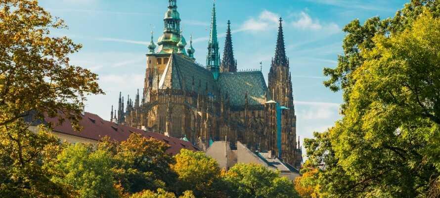 Katedralen anses som en af Centraleuropas vigtigste religiøse bygninger, og er bestemt et besøg værd.