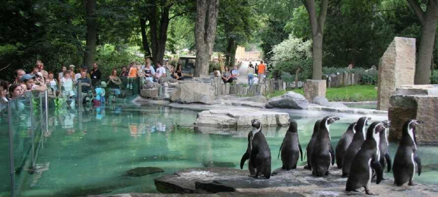 Lidt nord for byen ligger Prag Zoo, som blev kåret til verdens 4. bedste zoo i 2015.